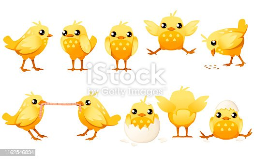 Set of cute little chick walk side view cartoon character design flat vector illustration.