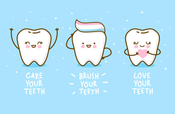 illustrazioni stock, clip art, cartoni animati e icone di tendenza di set of cute little teeth - denti