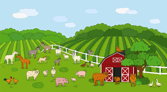 Set of cute outline vector cartoon pet animals at the countryside farm. Doodle Sheep, ram cow bull calf chicken, rooster goat mother and baby, cat pig rabbit hare, horse, fields forest, red barn house
