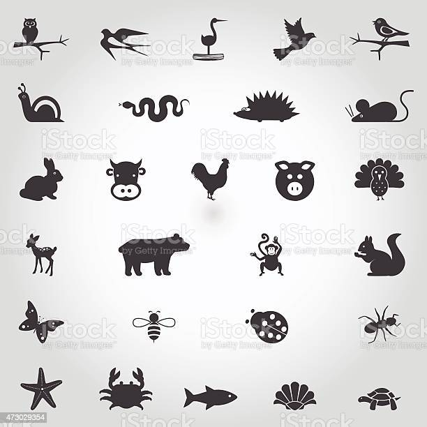 Set of cute simple animal icons on white background vector id473029354?b=1&k=6&m=473029354&s=612x612&h=swm lqdzsehfvx2yre pnhee4vkxggm1afbtoc 2ksm=