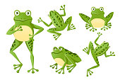Set of cute smiling green frog sitting on ground cartoon animal design flat vector illustration isolated on white background.