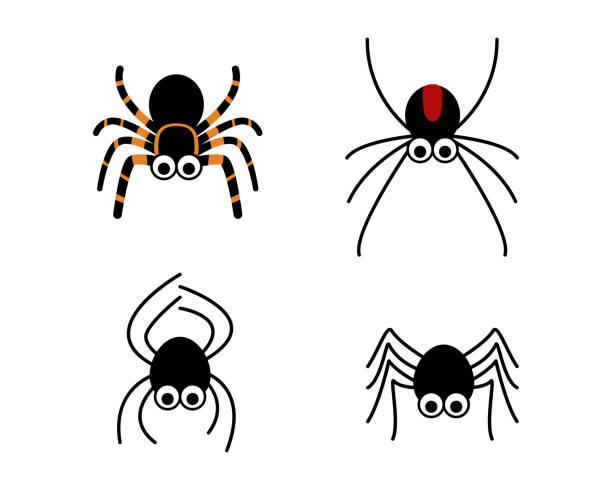 set of cute spider in simple style, vector - tarantula stock illustrations
