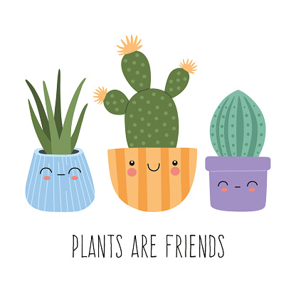Set of cute succulents with smiling funny faces