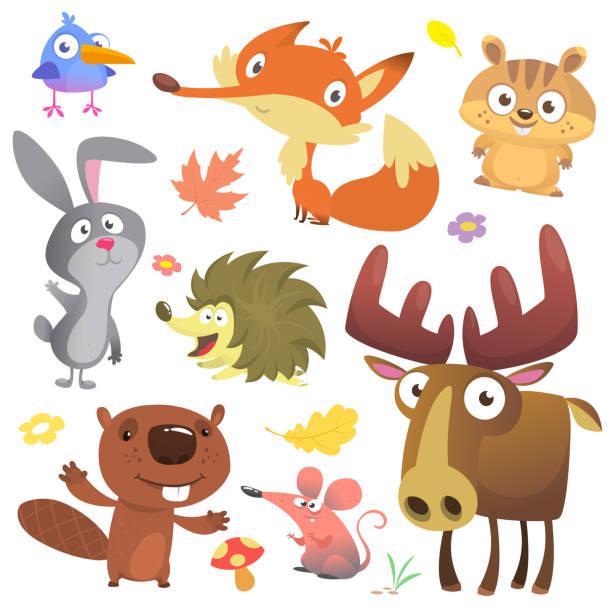 Satz von süßen Waldtiere isoliert auf weißem Hintergrund. Cartoon, Vogel, Igel, Biber, Hasen, Streifenhörnchen, Fuchs, Maus und Elch Elch. Vektor-illustration – Vektorgrafik