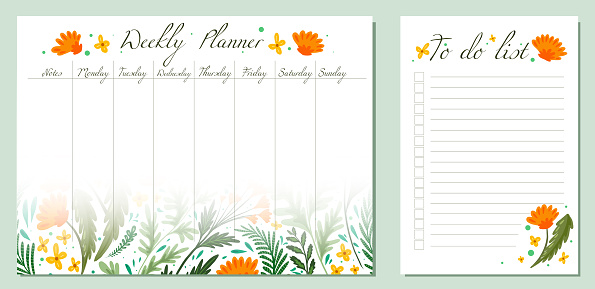 Set of day organization templates with grass and flower of fields. Weekly planner and to do list. Vector cards with wormwood, fennel, dandelion pattern. Setting tasks