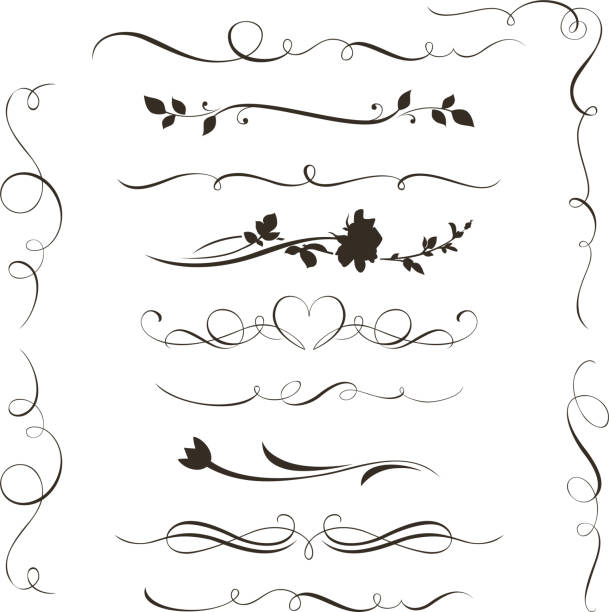Set of decorative calligraphic elements, floral dividers and flower silhouettes for your design Vector illustration temperate flower stock illustrations