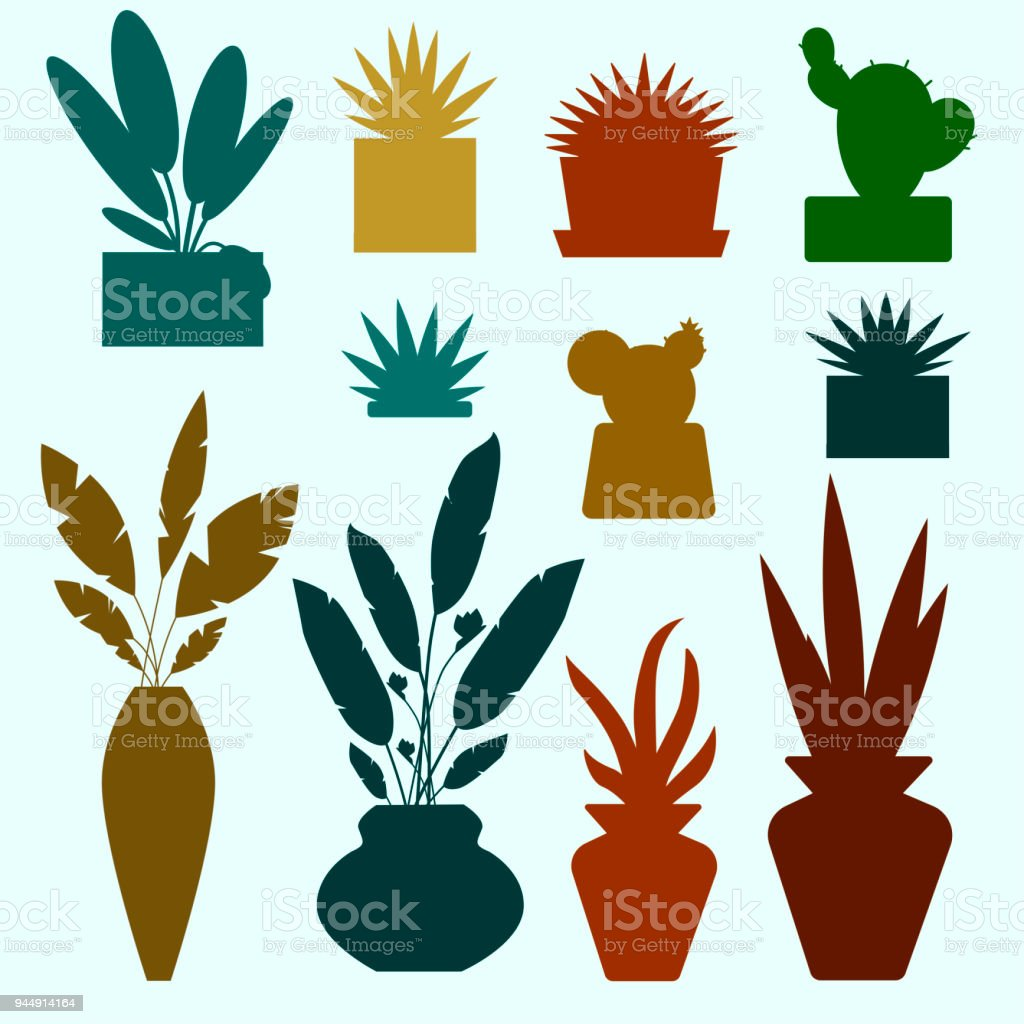Set Of Decorative House Plants And Flowers Colorful Silhouettes
