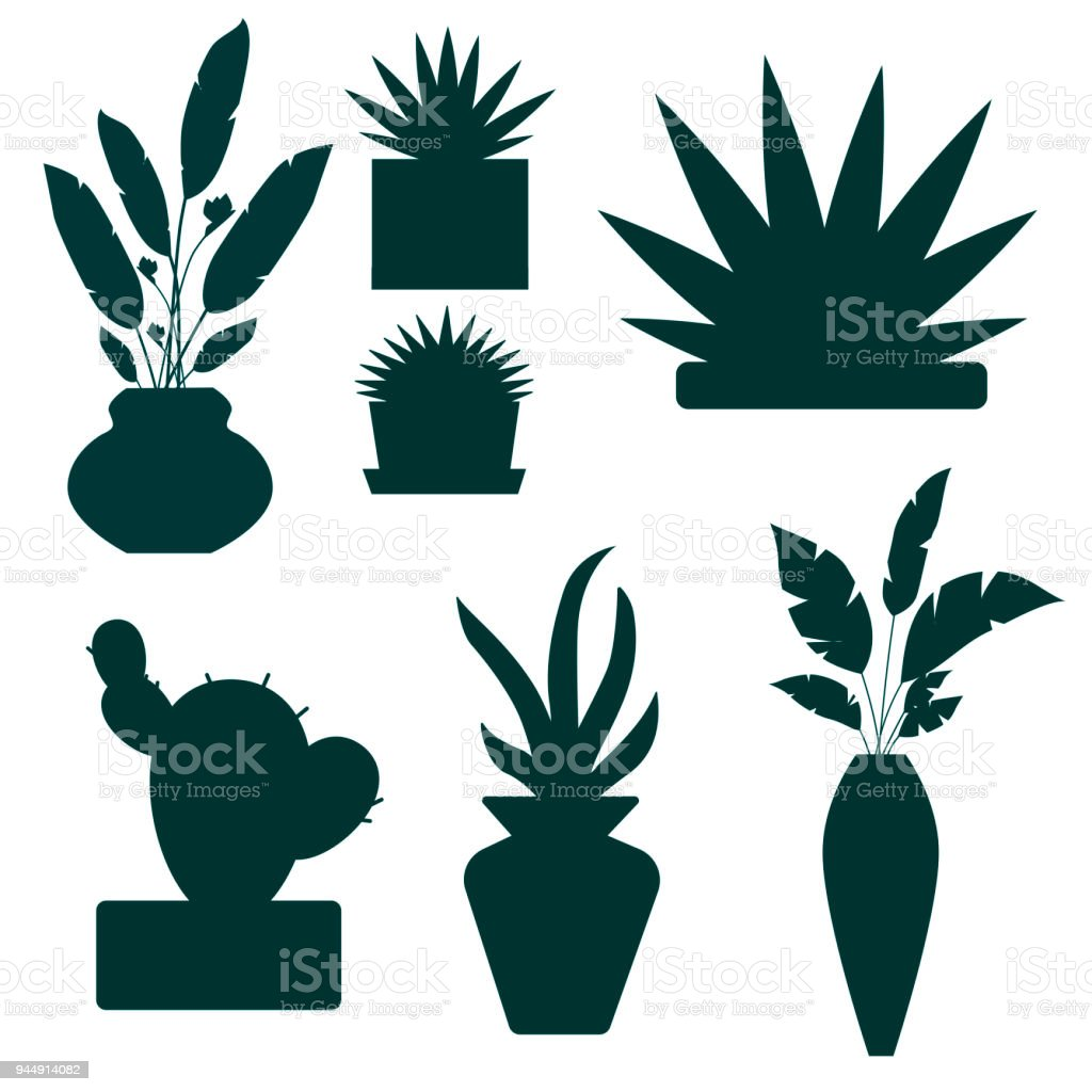 Set Of Decorative House Plants And Flowers Silhouettes Vector
