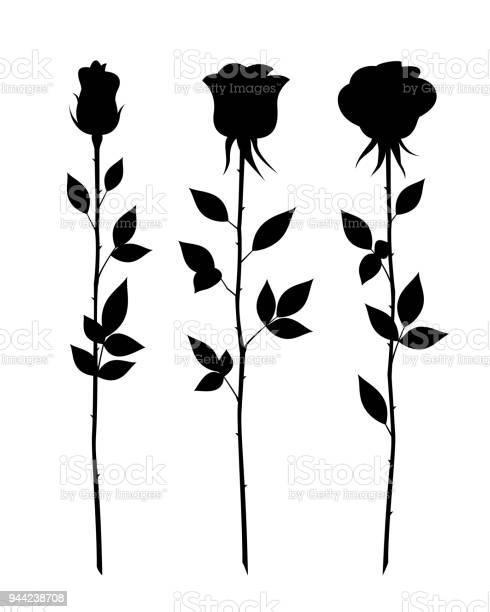 Set of decorative rose with long stem vector flower silhouette vector id944238708?b=1&k=6&m=944238708&s=612x612&h=gduzjq jv7lalvs7gla dd74xpywvgmeyddj0rz9rj8=