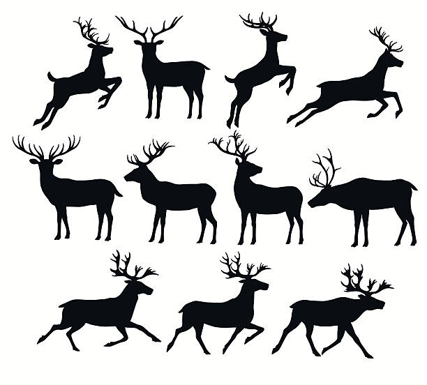 set of deer silhouettes - reindeer stock illustrations