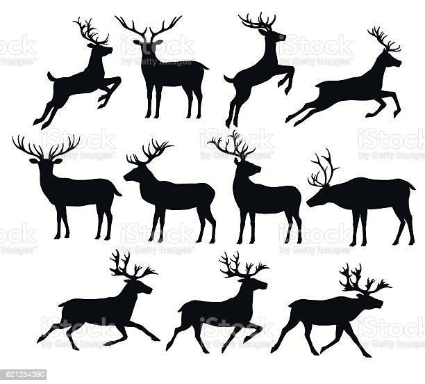Satz Von Hirsch Silhouetten Stock Vektor Art und mehr Bilder von Bock - Männliches Tier