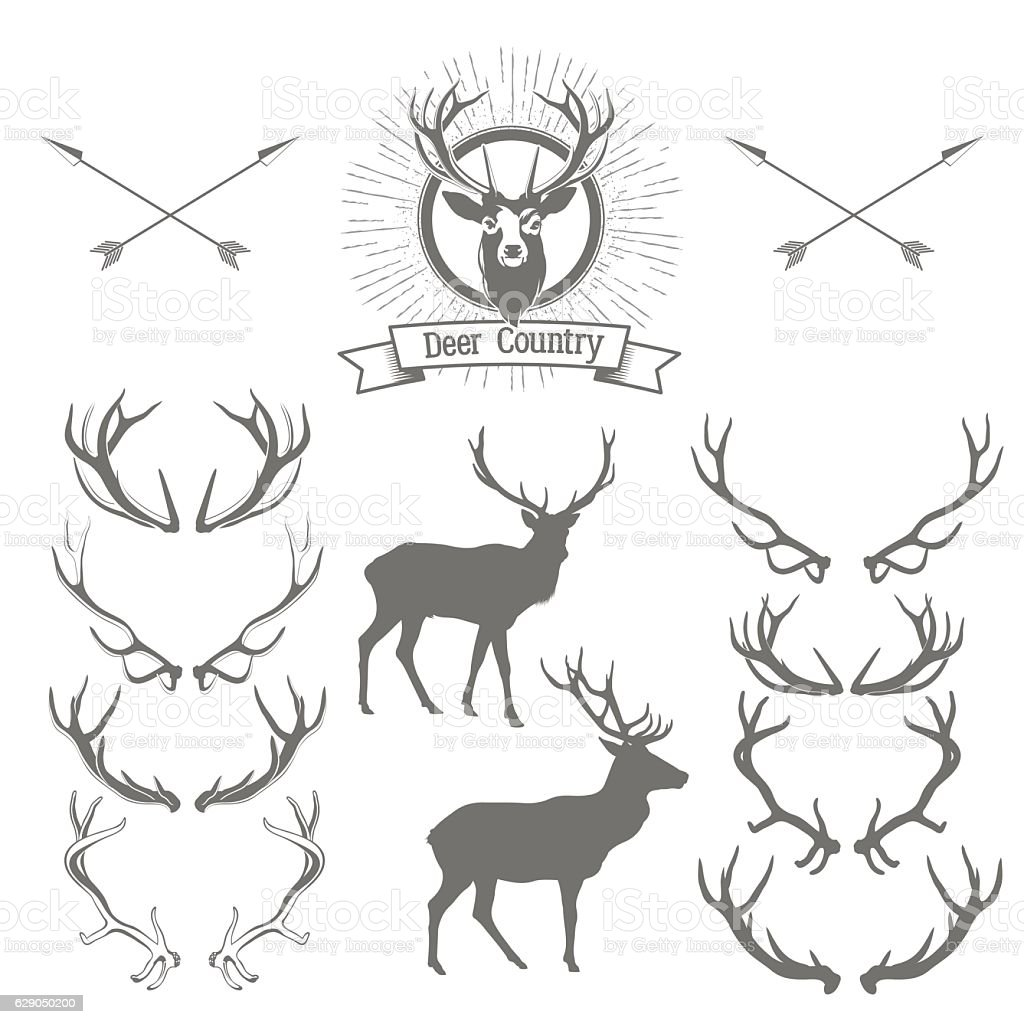 Set of deers  silhouette, deer head and antlers vector art illustration