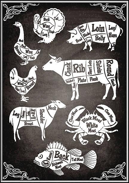bildbanksillustrationer, clip art samt tecknat material och ikoner med set of diagrams of sections of different animals and seafood - fläsk biff kyckling