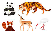 Set of different animals cartoon design flat vector illustration isolated on white background cute wild animal.