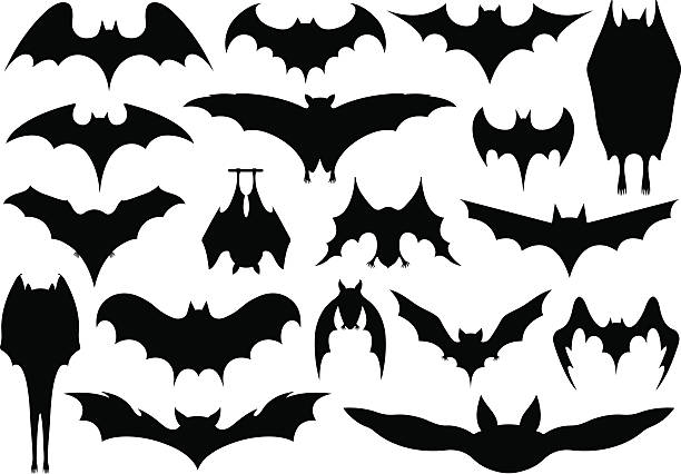 set of different bats - bat stock illustrations, clip art, cartoons, & icons