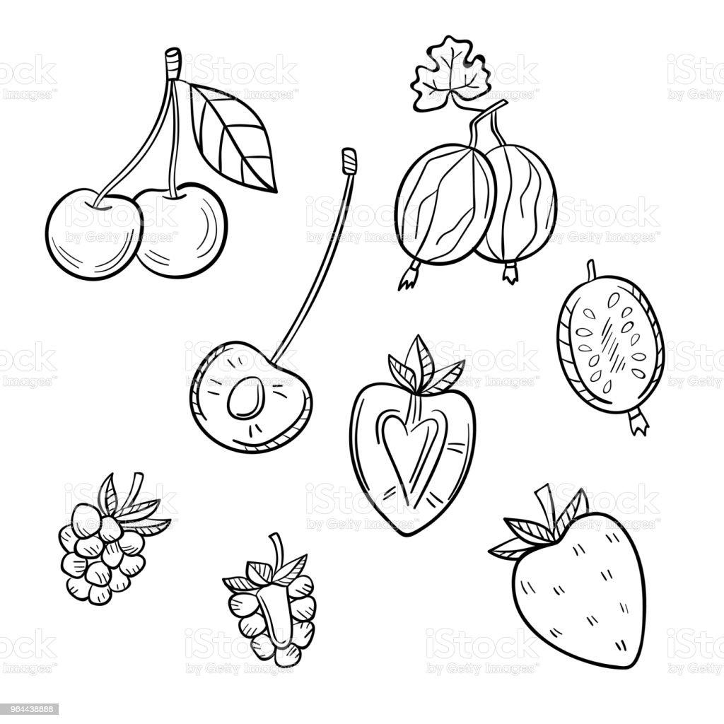 Um conjunto de diferentes frutas em um fundo branco. - Vetor de Alimentação Saudável royalty-free