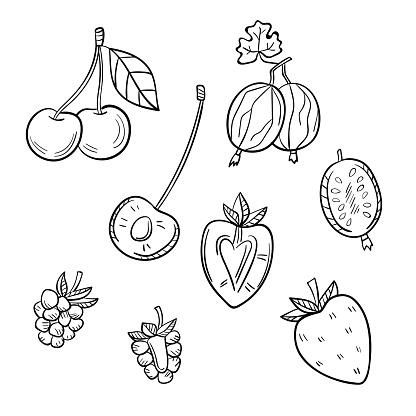 Vetores de Um Conjunto De Diferentes Frutas Em Um Fundo Branco e mais imagens de Alimentação Saudável