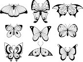 Set of different butterflies and bugs with beautiful patterns on wings. Hand drawn vector illustrations