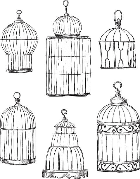 illustrations, cliparts, dessins animés et icônes de ensemble de cages d'armature, différentes dessinées à la main - dessin cage a oiseaux