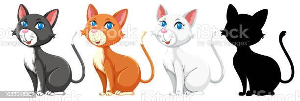 Set of different cat graphic vector id1053015302?b=1&k=6&m=1053015302&s=612x612&h=y ysiswqlocxwlnnsfzk  2eys4mdtcj chpecooa9g=