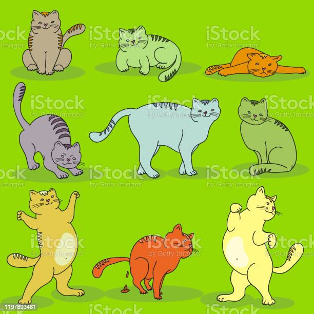 Set of different cats in different poses on green background pets vector id1197893461?b=1&k=6&m=1197893461&s=612x612&h=owpm3qr8fzauczlgwgliaxz6sifagcamqyduyf1ngj8=