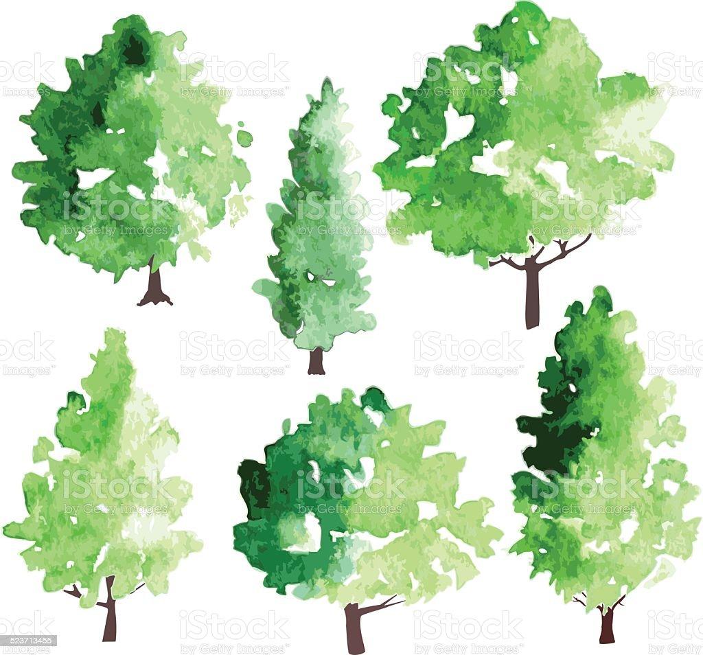 の異なる Deciduous の木 イラストレーションのベクターアート素材や