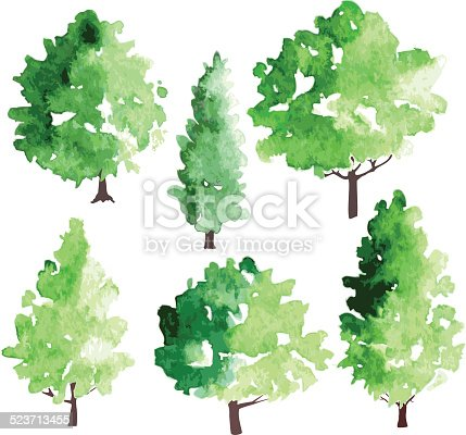 set of different deciduous trees, vector illustration