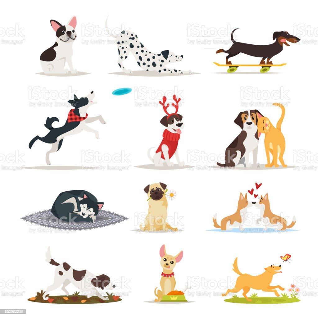 set of different dog breeds vector art illustration