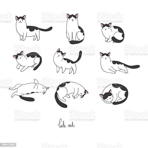 Set of different doodle poses cat pets vector id636420862?b=1&k=6&m=636420862&s=612x612&h=s xu61t hbdjyumbswxcct5kwdruj4uxofdro7mbcio=