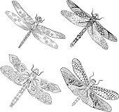 Set of different dragonflys.