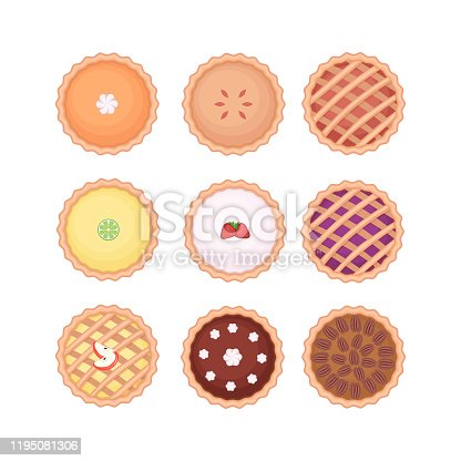 Set of different homemade pies. Pumpkin, apple, fruit, chocolate and pecan pies. Flat style elevated view. Vector illustration isolated on white background.