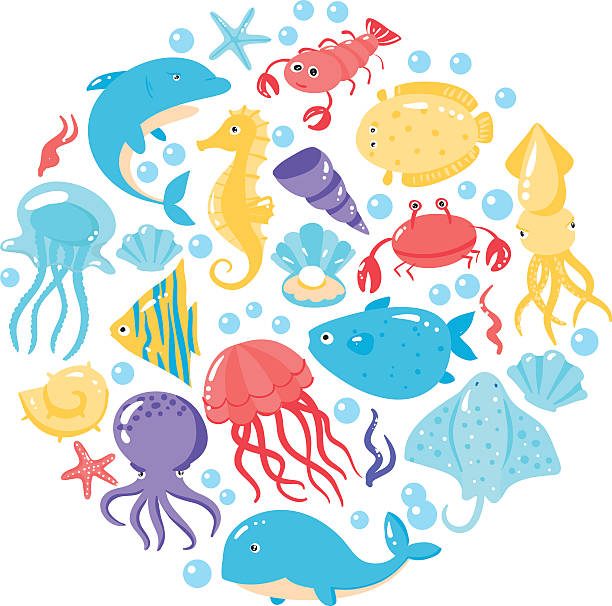 Set of different sea animals in cute cartoon style Set of different sea animals in cute cartoon style. Vector illustration beluga whale stock illustrations