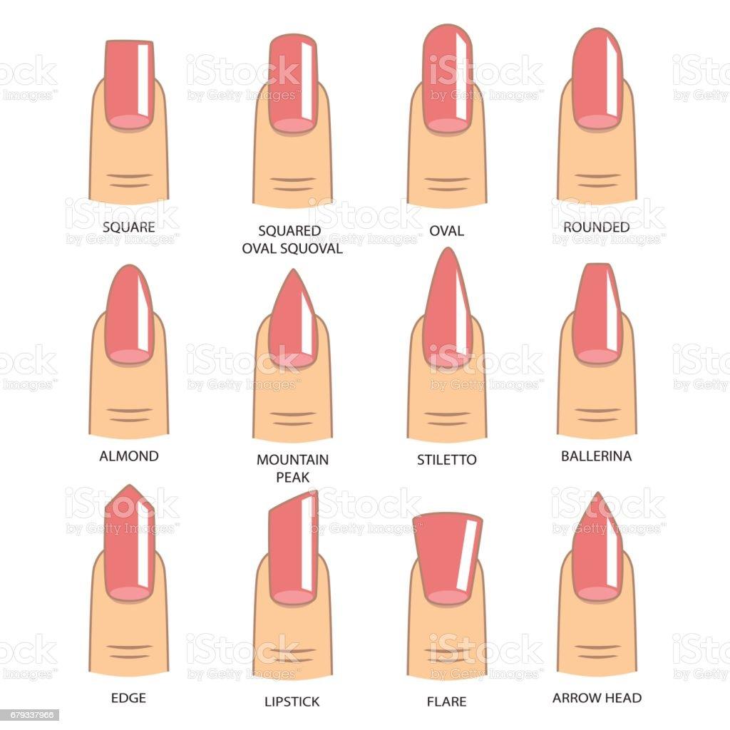 Reihe Von Verschiedenen Formen Der Nägel Auf Weiß Nagelformsymbole ...