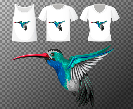 Set of different shirts with little bird cartoon character isolated on transparent background