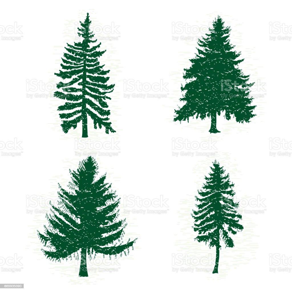 Conjunto De Diferentes Siluetas De árboles De Pino Verde Ilustración ...