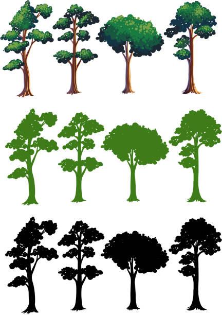 Reihe von verschiedenen Baum design – Vektorgrafik