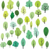 set of different trees, vector illustration
