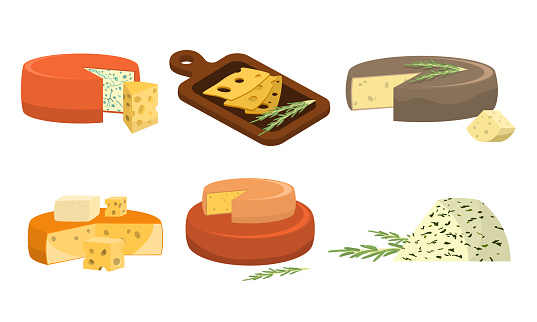 Set of different types of fresh pieces of cheese. Vector illustration in flat cartoon style.