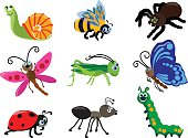 Set of different types of insects isolated on white background in flat style. Detailed illustration insect isolated in flat style on white background. Collections of insects: butterfly, dragonfly, snail, spider, ladybug, ant, caterpillar, grasshopper, bee. Vector illustration.