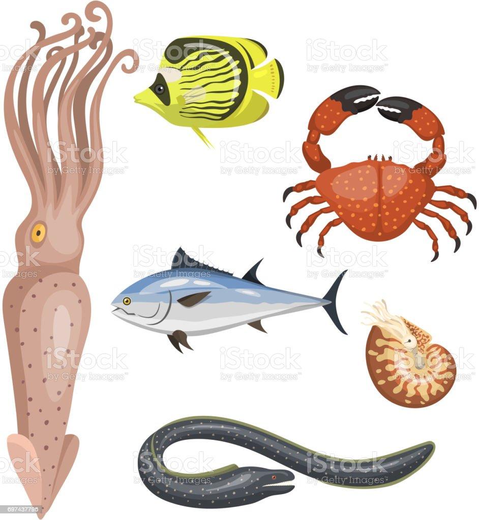 Set of different types of sea animals illustration tropical character wildlife marine aquatic fish vector art illustration