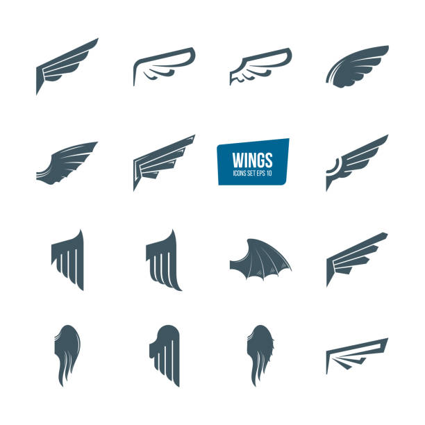 set of different wings icon set. emblems feather wing bird - animal wing stock illustrations