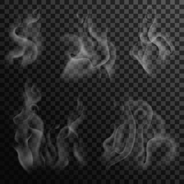 illustrazioni stock, clip art, cartoni animati e icone di tendenza di set of digital realistic smoke on a dark background. izolated white steam from coffee, tea and hot food. transparent elements for web pages and menu desing - kitchen situations