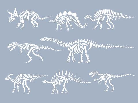 Conjunto de esqueletos fósiles de dinosaurios