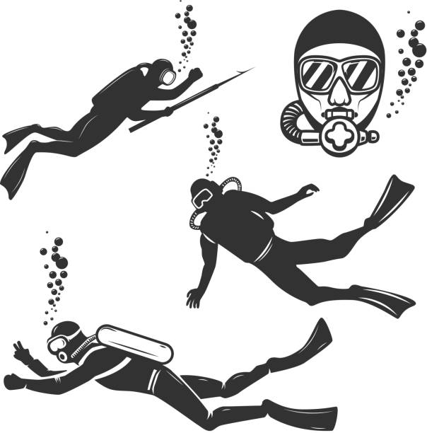 Set of diver icons isolated on white background. Set of diver icons isolated on white background. Design element for label,emblem,sign, poster. Vector illustration diving into water stock illustrations