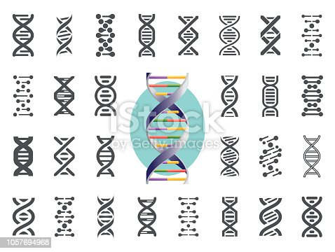 Set of DNA icons. Human genetic variation. Nucleic acid sequences. Vector illustration.