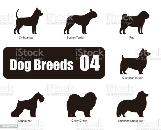 Set of dog breeds black and white side view vector vector id481578538?b=1&k=6&m=481578538&s=612x612&h=wihcnnmu8zulw4ymoik37i2nfbdeas gfhmar9ctpe4=