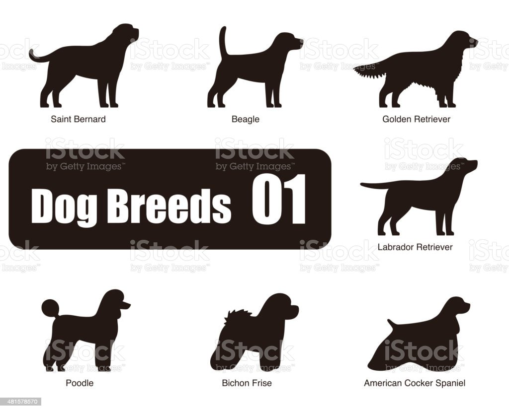 set of dog breeds, black and white, side view, vector vector art illustration