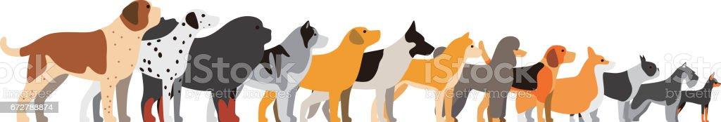 set of dog breeds, side view, vector illustration – artystyczna grafika wektorowa
