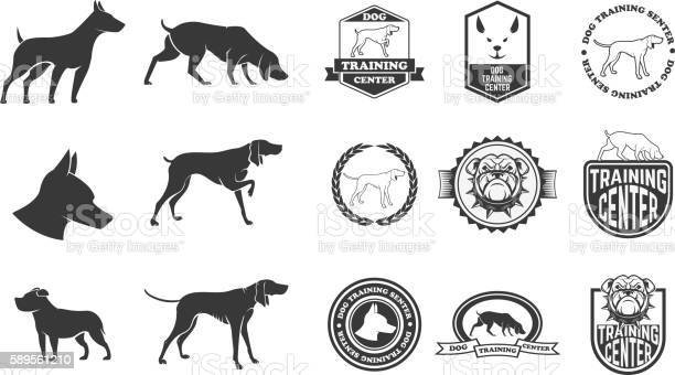 Set of dog icons labels and design elements vector id589561210?b=1&k=6&m=589561210&s=612x612&h=eh oj qowo20y3ceojlirpymw8lfh7nnogieff4q73c=