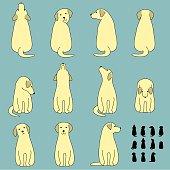 Set of dog sitting poses.